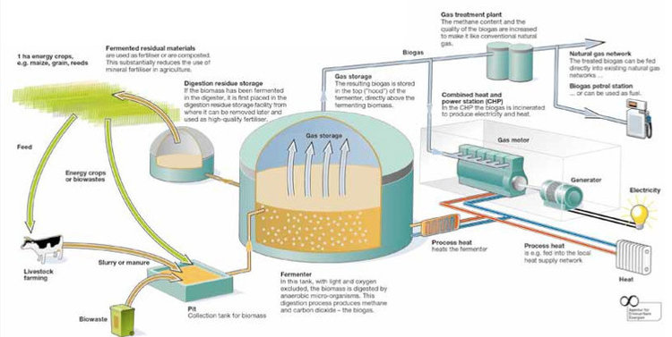 Aerzen comess edition 0113 aerzen schematic diagram of a biogas plant ccuart Image collections